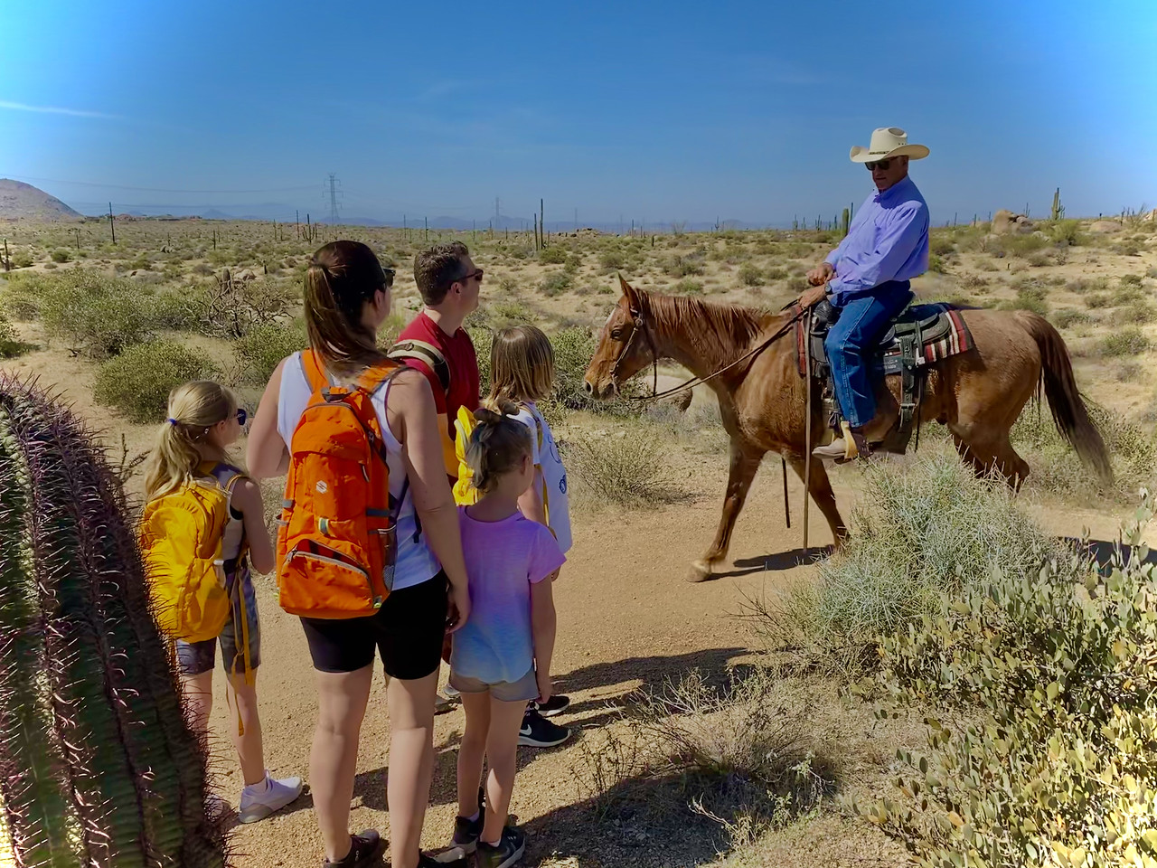 A family of five is thrilled by the sight of a real-life cowboy on horseback during one of our Phoenix hiking tours. Taking children on a Wild Bunch Desert Guides adventure always is a rewarding experience because no one ever knows what sort of once-in-a-lifetime sight they will see.