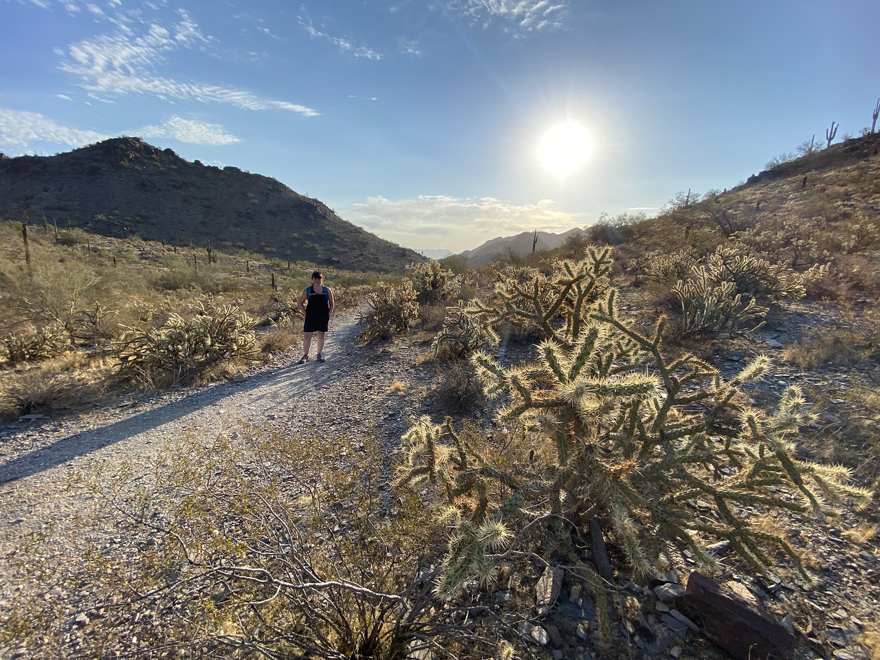 With Teddy Bear Cactus waiting in the foreground, a solo hiker makes her way along one of the hundreds of trails in the greater Phoenix area with an early-morning Arizona summer sun starting to raise the temperatures.
