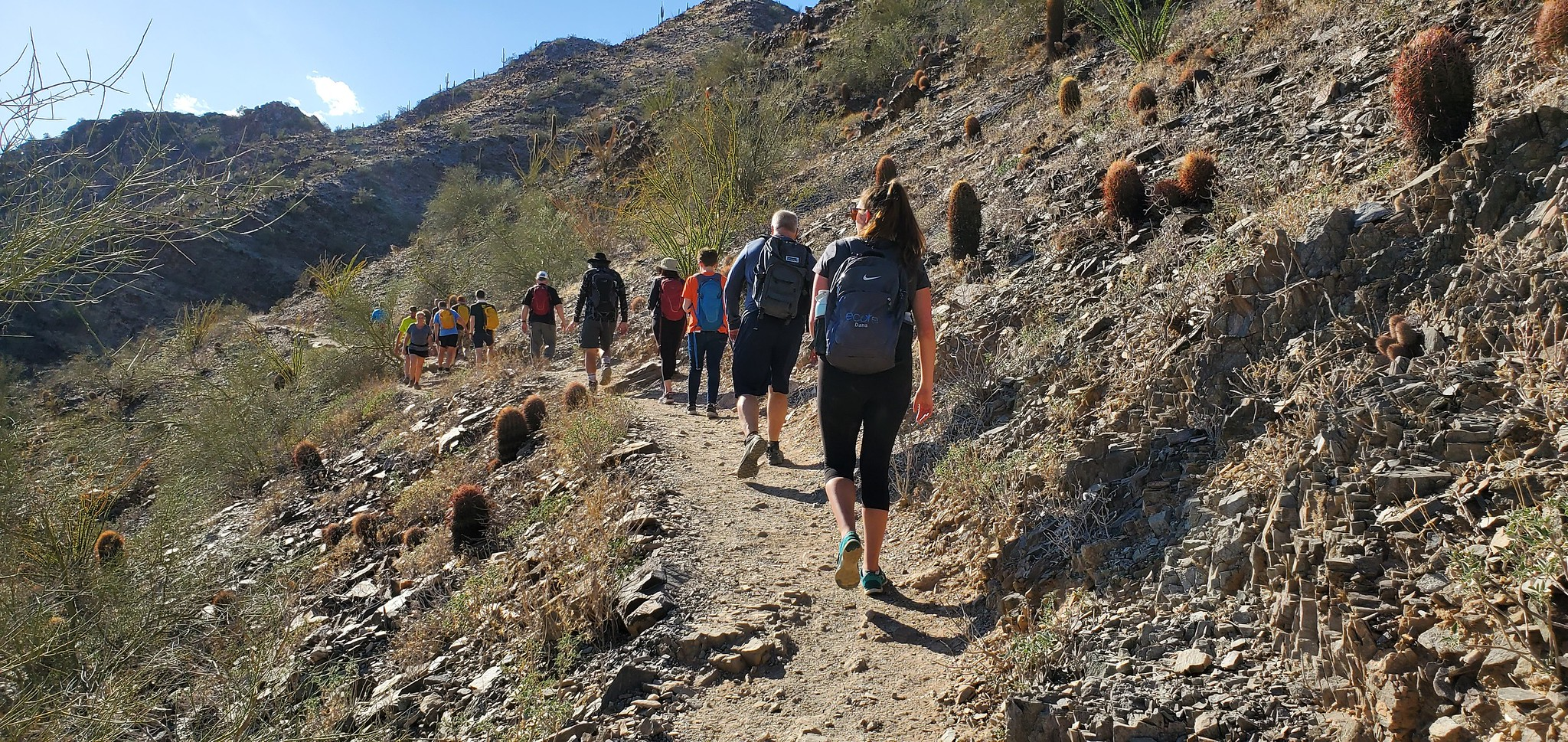 A long line of hikers make their way across a rocky ridge line during a Wild Bunch Desert Guides adventure.