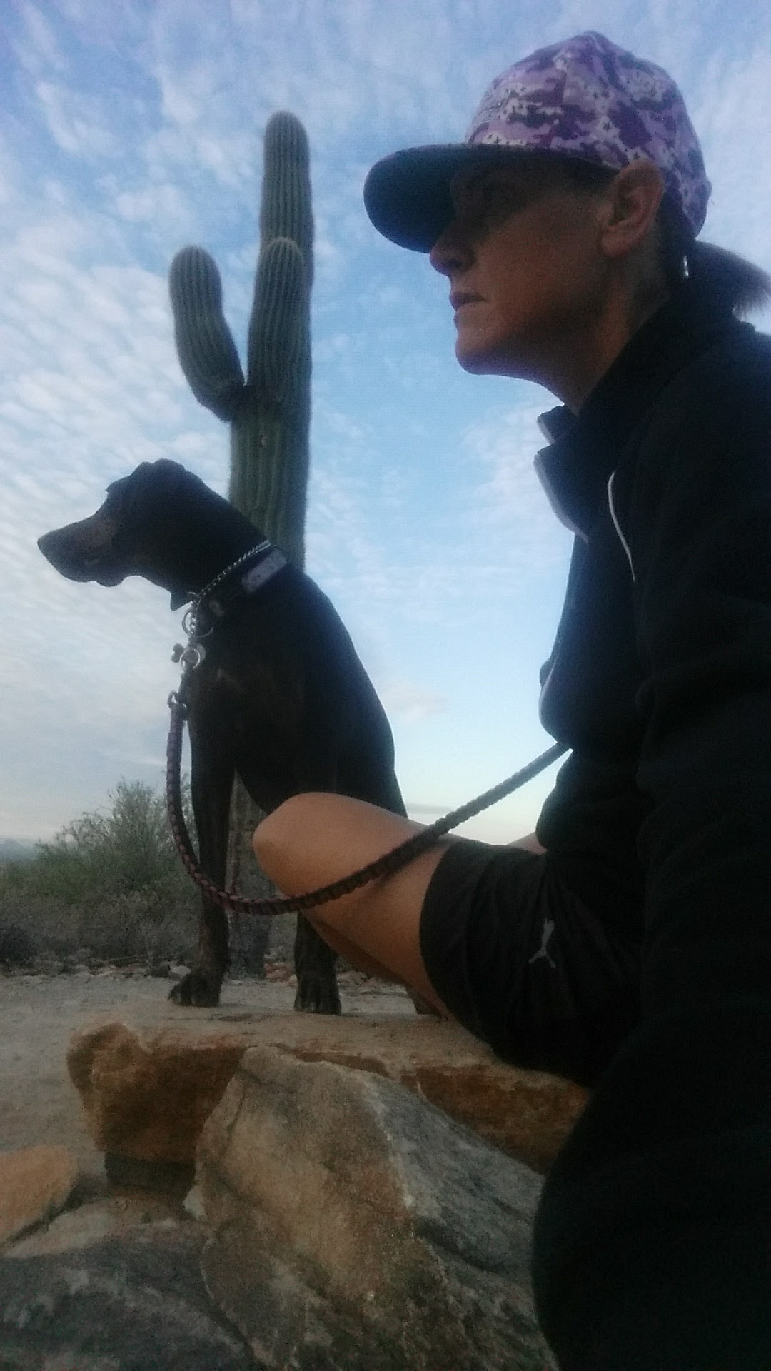 Daisy Mae, left, and her owner Laurel Darren enjoy a quiet moment of reflection surrounded by nature during the early-morning quiet of a Phoenix dog hike.
