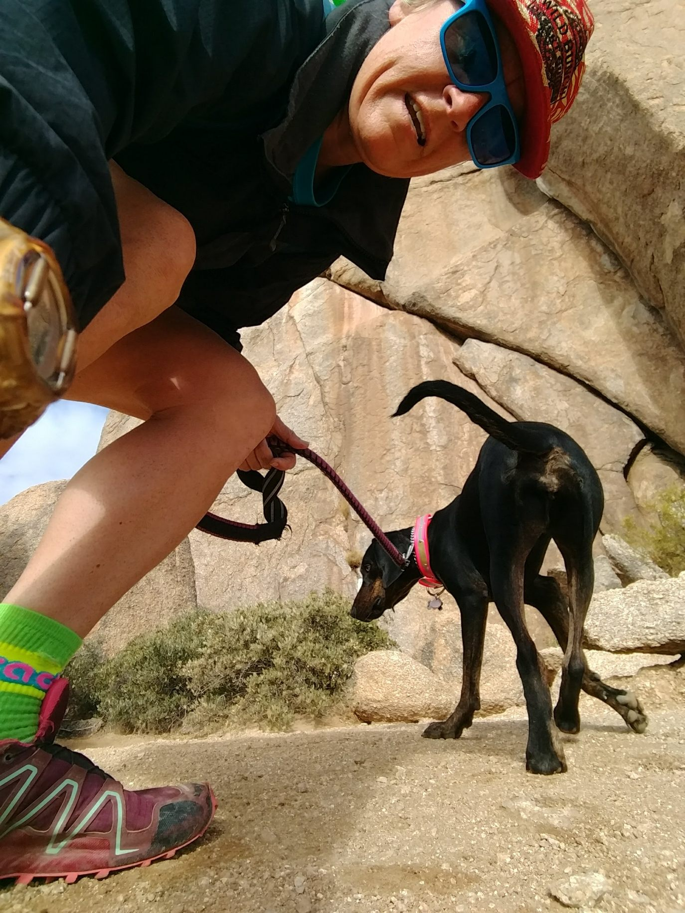 Laurel Darren (left), owner of Wild Bunch Desert Guides, hikes her pair of Plott Hounds, including Daisy Mae (pictured), a couple of times each week. Her company specializes in dog-friendly hiking in Phoenix because of her first-hand experiences with her own pets.
