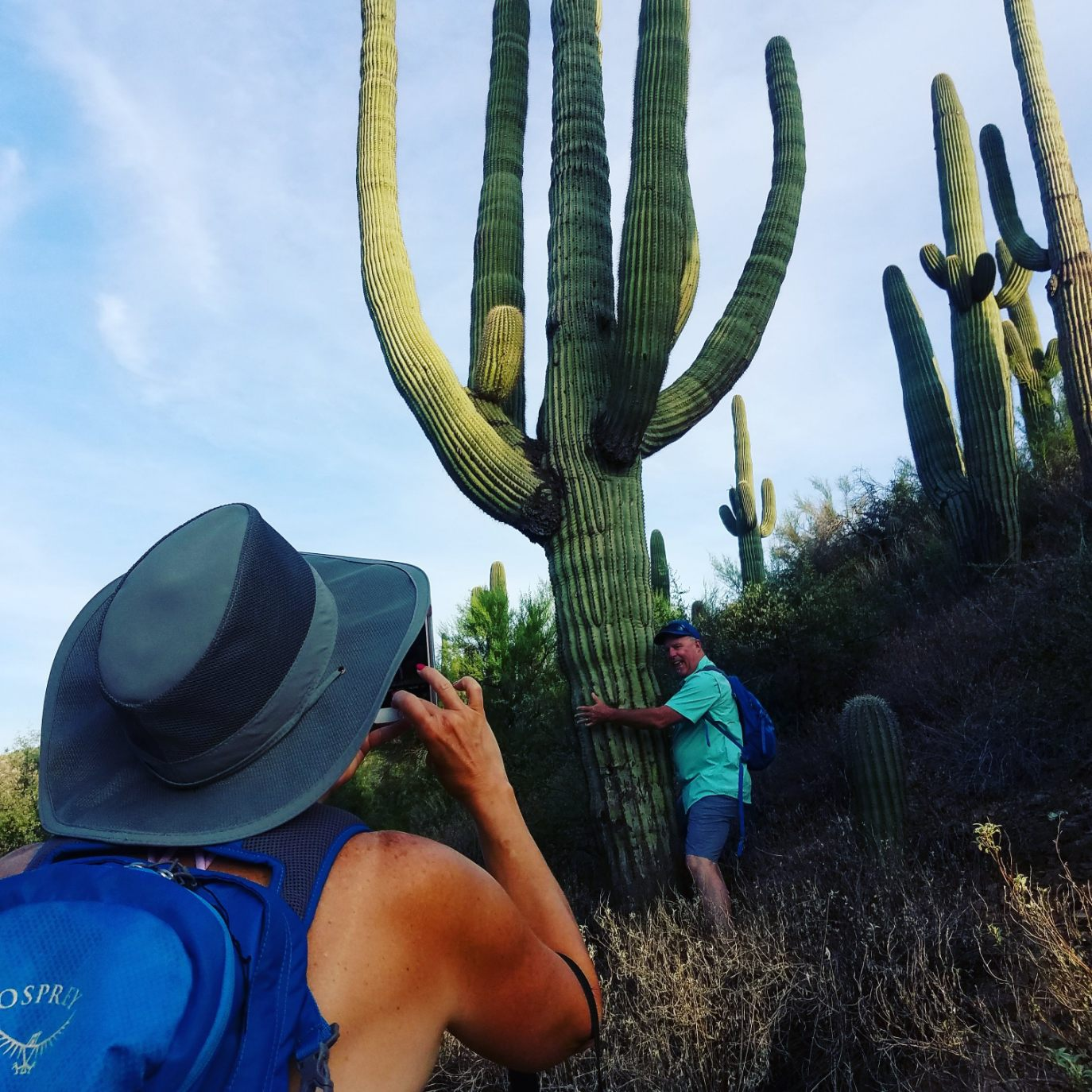 Saguaro Cactus majestically shooting skyward while a Wild Bunch Desert Guides guest takes a picture of another guest hugging the cactus.